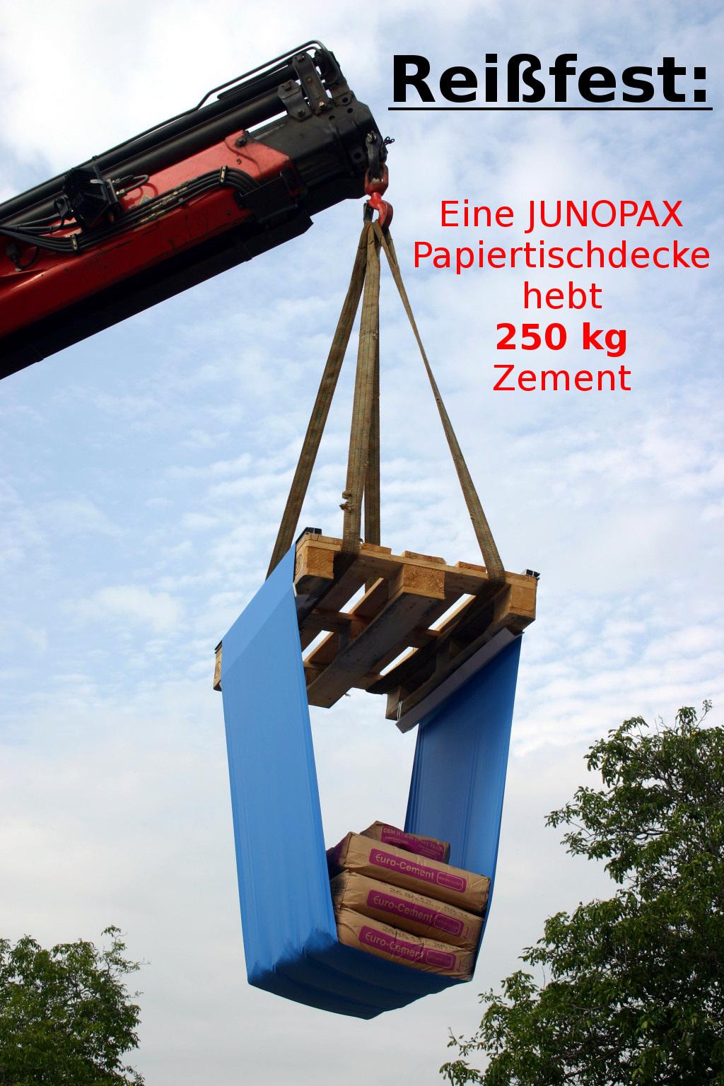 250 kg am Kran